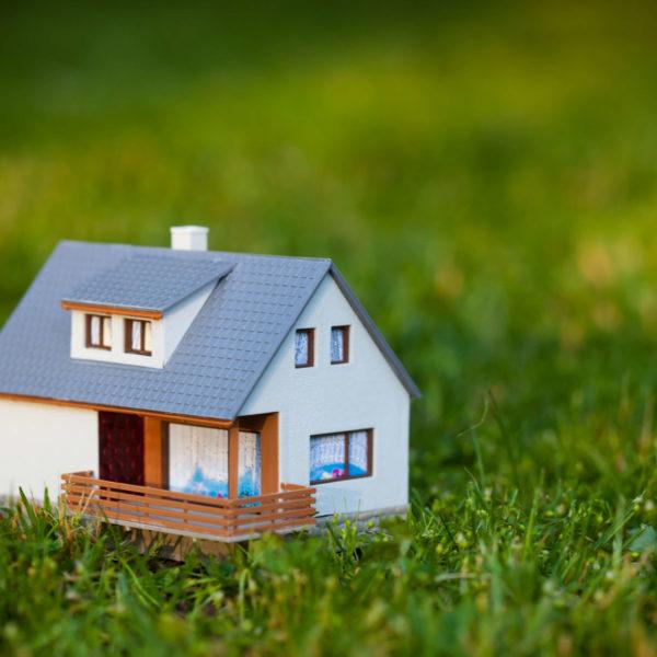 little house on grass